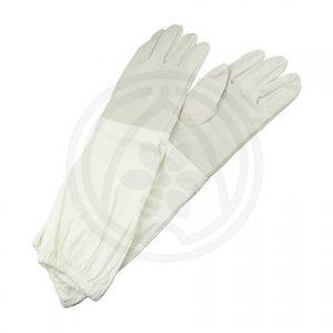 81008 - Gloves for guest