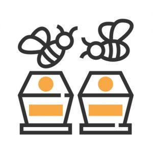 Parts of bee hives